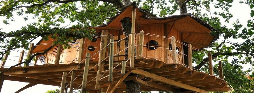 Cabane dans les arbres en Bretagne